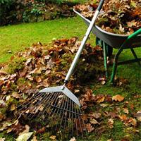 Garden Clearance Harrow Weald